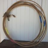 Cane hoops