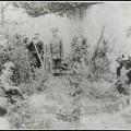 Boy students in school garden.
